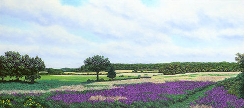"""A View Towards Essex, MA"" 18.5"" X 41.5"" Pastel on BFK Rives"